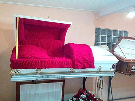 casket6